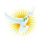 Peace dove. The peace holy spirit dove, realistic illustration, can be used with religious purposes too Stock Image