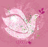 Peace dove. Stock Photo