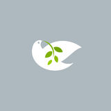 Peace dove with olive branch on grey background. Logo template Stock Photos