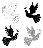 Peace dove with olive branch Stock Images