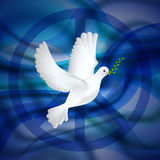 Peace dove with olive branch for International Day poster on the blue waves background. Stock Image