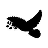 Peace dove with olive branch Stock Photos