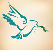 Peace Dove with olive branch. Vintage stylized vector Illustrati Stock Image