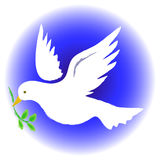 Peace Dove Round. Illustration of a dove carrying an olive branch...symbolizing peace Stock Photos