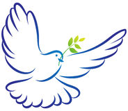 Peace dove. Vector illustration of peace dove on white background stock illustration