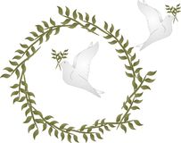 Peace doves with olive branches. Couple of doves with olive branches in their beaks, while flying in and around an olive branched circle Stock Photos