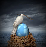 Peace On Earth. Global Peace and hope for no war in the middle east and the rest of the planet with a white dove building a nest with twigs and a fragile egg Royalty Free Stock Photo