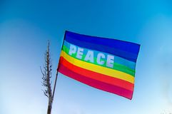 Peace flag in the blue sky Royalty Free Stock Image