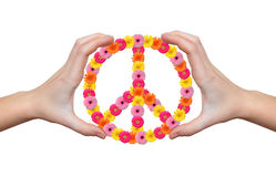 Peace flower symbol. In hands isolated Royalty Free Stock Images
