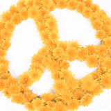 Peace, Flower Symbols Royalty Free Stock Image