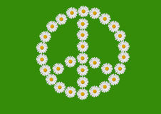 Peace and love. The symbol peace and love made with daisies flowers Stock Image