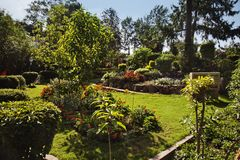 Peace Park at Mount Abu, Sirohi District, Rajasthan, India. Trees and plants in a garden, Peace Park, Mount Abu, Sirohi District, Rajasthan, India Stock Photo