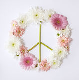 Peace sign flower Royalty Free Stock Photography