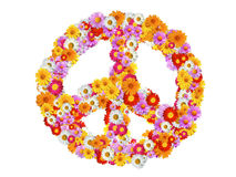 Peace Sign with garden pyrethrum. Separated Stock Image
