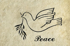 Peace Stone Etching. A stone etching of a dove flying and the word peace royalty free stock images