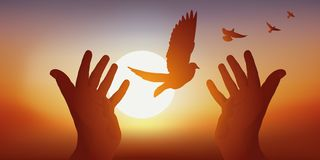 Peace symbol with joined hands releasing a bird's flight at sunset. vector illustration