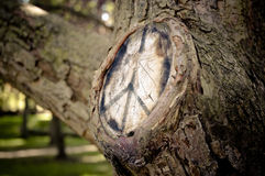 Peace symbol on a tree where branch removed. The peace symbol drawn on a tree in marker where a branch had been removed Stock Image