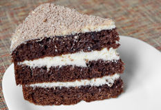 Peace of tasty cake Royalty Free Stock Photo