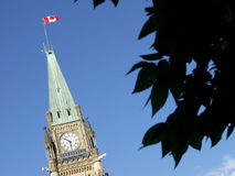 Peace Tower. The Peace Tower of the Canadian Parliament in Ottawa is framed by leaves stock images