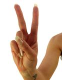 Peace or Victory Royalty Free Stock Photography