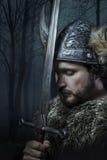 Peace, Viking warrior Stock Image