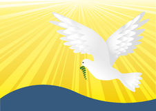 Peace_yellow. White dove of peace flying in the backdrop, vector illustration Stock Photography