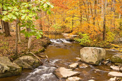 Peaceful. This peaceful creek wanders the fall woods and all there splendid color royalty free stock photography
