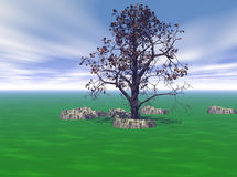 Peaceful. Illustration of a peaceful landscape vector illustration