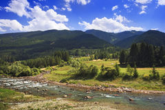 Peaceful alpine plateau with fir-trees, blue sky and river Royalty Free Stock Photos