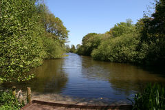 Peaceful Backwater. Stock Photography