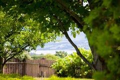Peaceful Backyard Royalty Free Stock Photos