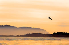 Peaceful Bay In Orange Sunset Light Watercolor Pai Royalty Free Stock Photography