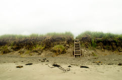 Peaceful beach landscape. Peaceful foggy beach landscape with staircase Royalty Free Stock Photos