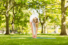 Peaceful blonde doing yoga in the park Stock Photos