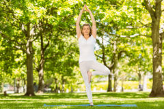 Peaceful blonde doing yoga in the park Stock Images