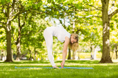 Peaceful blonde doing yoga in the park Royalty Free Stock Photography
