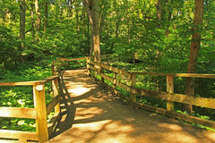 Peaceful Boardwalk Trail in Fontenelle Forest Nature Center. Peaceful boardwalk trail through lush trees in the Fontenelle Forest Nature Center in Bellevue Stock Photography
