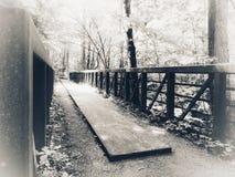 Peaceful bridge. Peaceful walking bridge through natures landscapes Stock Images