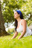 Peaceful brunette doing yoga on grass Stock Image