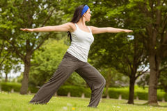 Peaceful brunette doing yoga on grass Stock Photography