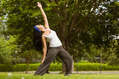 Peaceful brunette doing yoga in the park Stock Photos