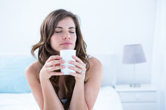Peaceful brunette drinking a cup of coffee Royalty Free Stock Image