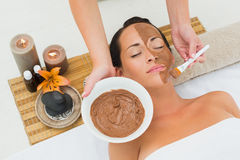 Peaceful brunette getting a mud facial applied Stock Images