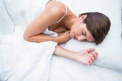 Peaceful brunette sleeping Stock Photos