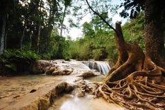 Peaceful cascade Waterfall Stock Image