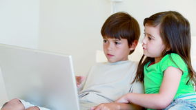 Peaceful children using a laptop. In a bright room stock video footage