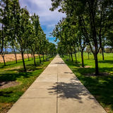 A peaceful concrete walkway in the park. Royalty Free Stock Image