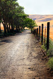 Peaceful Country Lane Stock Photography
