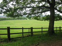 Peaceful country scene Royalty Free Stock Photography