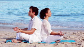 Peaceful couple meditating in lotus pose at the beach stock video